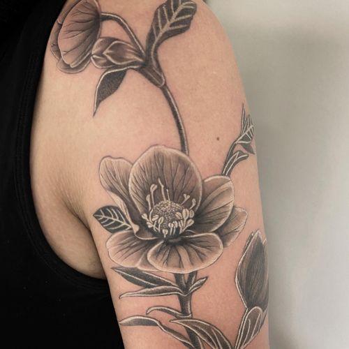 #tattoo #tatouage #tattoooftheday #hellebore #helleboretattoo #flowers #flowertattoo #realistictattoo #realism #realistic #realisticink #realisticflower #kwadron #sunskin #lausanne #tattoolausanne