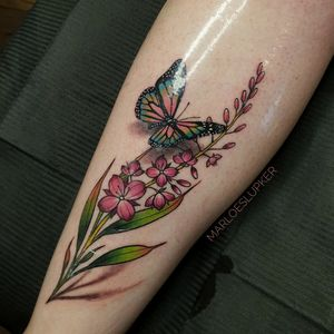 Fireweed & monarch butterfly