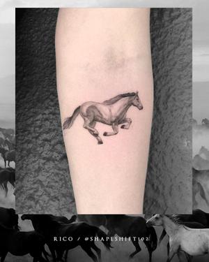 Run Free . . . #gorgeous little #detailed #horse #tattoo by @shapeshift102 . . . @flashheal @creamtattoosupplyza @tattooinc.co.za @ecotatpro @electrumstencilproducts @dynamiccolor @blackclaw @south_african_tattoo_society . . . #tattoo #tattoos #kakluckytattoos #capetowntattoos #model od #love #art #artists #goodvibes #art #artist #beauty #bigmood #instagood #instadaily #fineline #capetowntattoos #friday #mood #tattoosofinstagram #nature #finelinetattoos #mustlovehorses