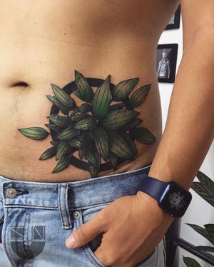 Peperomia 🌱WeChat ID:suntattoo1(only for work)........................... ........................... ........................... #tattooed #tattooart #chinesetattoo #tattooartists #tattoodo #skin #design #skinart #skinart_traditional  #chinesetattoos #drawing #sketch #thebesttattooartists #routines #art #workharder #suntattoostudio #suntattooparlor #neotraditionaltattooers #neotraditional #neotraditionaltattoo #neotraditionaltattoos #neotraditionals #neotradstyle #neotrad #geometrictattoos #tattoodo