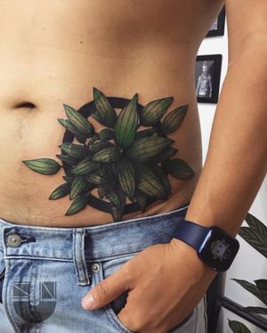 peperomia 🗿 WeChat ID:suntattoo1(only for work)........................... ........................... ........................... #tattooed #tattooart #chinesetattoo #tattooartists #tattoodo #skin #design #skinart #skinart_traditional #chinesetattoos #drawing #sketch #thebesttattooartists #routines #art #workharder #suntattoostudio #suntattooparlor #neotraditionaltattooers #neotraditional #neotraditionaltattoo #neotraditionaltattoos #neotraditionals #neotradstyle #neotrad #geometrictattoos #tattoodo