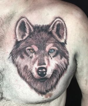 #tatuagem #tattoo #saopaulo #piritubaink #tatuar #pirituba #tattoolobo #lobo #lealdade #familia #caça #coragem