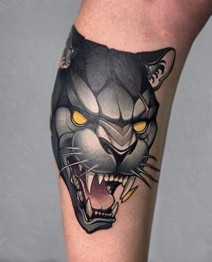 MAD PANTHER  Cover Up⚡️ #panther #animal #angry #wild