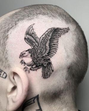 Fine line eagle