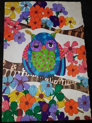 #owls #color