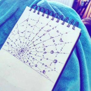 #web #spiderweb
