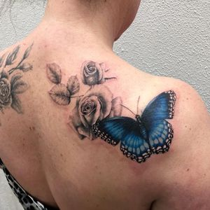 Butterfly coverup.