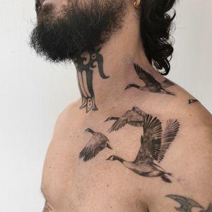 Geeses   by @naokotattoo Instagram : @naokotattoo #tattoofrance #finetattoo #birdtattoo #realistictattoo #geesetattoo #tattooparis #naokotatoo