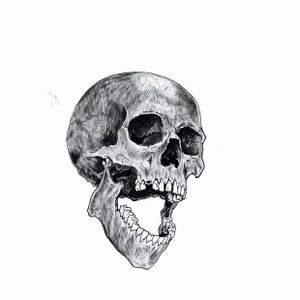 """Another rendering for the """"Crow & Skull piece"""