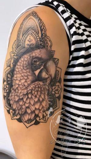 ⚛️🦜Macaw lover🦜⚛️ #macaw #macawtattoo #armtattoo #dotworktattoo #geometry #dopetattoos #worldfamousink #tattooist #татуировка #inkedlife #tattoomodel #inkjunkeyz #bodyart #art #тату #inkstagram  #inktober #黥 #dandantattz  #inkdrawing #tattooideas #cooltattoos #naija #bodyart #tatuu #tatuagem #tatouage #tatuaż #黥 #入れ墨 #igtattoo #bnginksociety #mandala