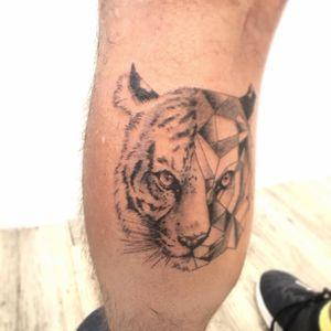 Little geometric tiger