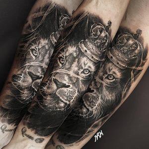 Covered up lion, 2019, London #영국타투 #uktattoo #ukart #uktta #londontattoo #birminghamtattoo #middlesbroughtattoo #darkornaments #darkartists #blackworkers #blacktattooart #blackworktattoos #btattooing #blxckink #blacktattoos #thedarkestwork #onlyblackart #onlythedarkest #blackworkersubmission #tattoowork #tttism #blkttt #liontattoo #blackandgraytattoo #artinkpaint #ink_bw #blackworknow #sketchandart #tattooideas #flashwork