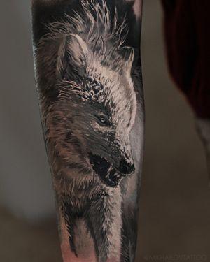 Realistic tattoo wolf by tattoo artist Alexei Mikhailov @mikhailovtattoo