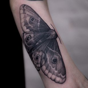 Moth done in Saint-Petersburg in January! 1 session 4 hours