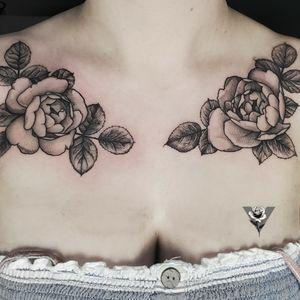 Delicate garden roses #rose #roses #flower #flowers #floral #gardenrose #blackwork #blackandgray