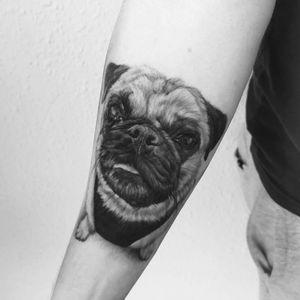 Cody 🐶 . . . #tattooed #inked #art #artist #tattooartist #budapest #budapesttattoo #bp #hungary #hungariantattoo #dog #dogtattoo #cody #minimaltattoo #bnw #blackandwhite #europe #travel #photo #photography #inkedmag #tattooedmag #inkjunkeyz #tattoomachine