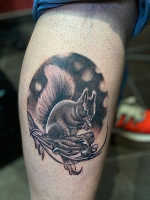 Squirrel for my clients daughter.