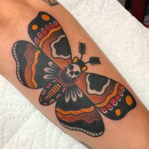 Fun Deaths Head Moth