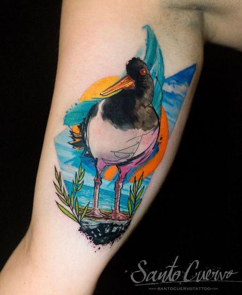 Oystercatcher - Sponsored by: @hellotattoomed @greenhousetattoosupplies Done using: @killerinktattoo @fusion_ink @fkirons @inkjecta @blackclaw @stencilanchored @inkeeze #tattoo #tattedup #tattooart #tattoostudio #tattoolovers #ink #inklife #inked #tattooartist #londontattooartist #tattooing #tattoolife #tattoosocial #tattoolondon #vegantattoo #veganink #vegan #killerinktattoo  #london #stokenewington #hackney #londontattoostudio #alexalvarado #santocuervo
