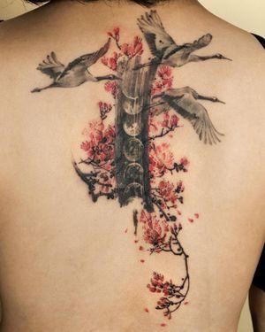 Oriental plum blossom