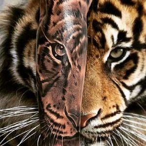 🐯🐯🐯 —————— #tattoo #tattoos #uktat #uktta #tattooartist #blackandgreytattoo #uktattoo #fkirons #empireinks #cheyennetattooequipment #yayofamilia #ghostcartridges #tiger #tigertattoo