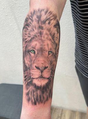 Handsome lion 🦁