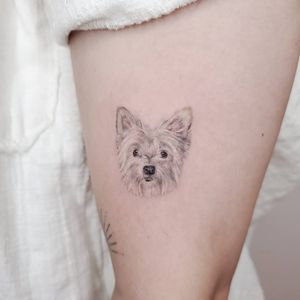 Dog portrait #microrealism #realism #dog #inked #tattoosbysherri