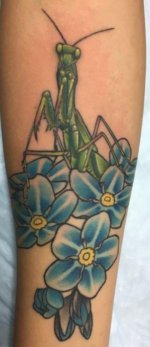 Mantis in flowers
