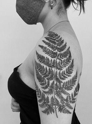 #grenfern #ferntattoo #fern #fernlover #botanical #botanicaltattoo #botanicalart #botanicaltattoos #minimaltattoo #linework #boldlines #blackboldsociety #blxckink #oldlines #tattoosandflash #darkartists #topclasstattooing #inked #inkedgirls #inkedup #minimal #minimalism #stattoo #smalltattoo