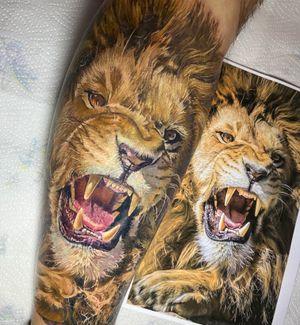 Lion colour tattoo. Surrealism , realistic! #lithuanianirons #worldfamousink #worldfamoustattooink #worldfamousforever #realismtattoo #realistic #tattoomarket #tattoodo #tattooartist #tattoostyle #tattooed #ink #татумастер #tattoolovers #tattooistartmag #inkedmag #tattoorealistic #татуировки #sullen #radtattoos
