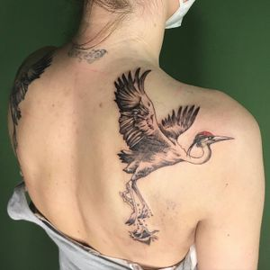 Tattoo from gui