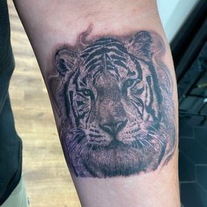 First session on this Snow Tiger! My books are open. Lets work #InkByJacki