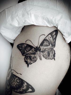 Skull moths 🖤