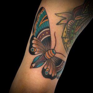 Moth go Daniela