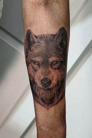 Lone Wolf #clydelaudato #wolftattoo #blackandgreytattoo