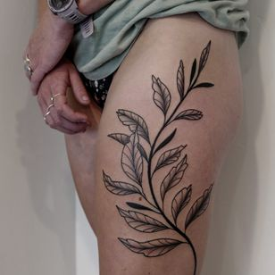 Plant tattoo by Migdy #Migdy #illustrative #linework #fineline #blackwork #plant #leaves #leaf #nature #branch