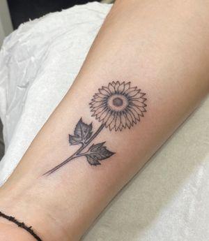 Single needle sunflower for Rowan at Seven Doors Tattoo