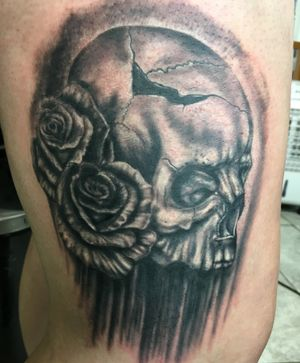 Scull and rose