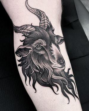 Goat on lower leg.