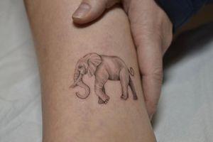 Small elephant 🐘 #delicatetattoos #elephant #fineline #black&grey