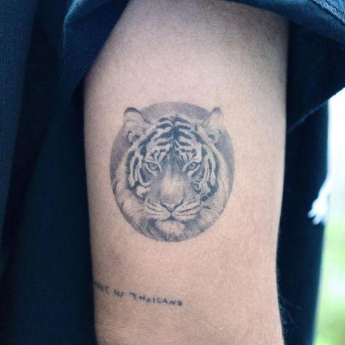 Tiger on the arm. #fineline #tiger #tigertattoos