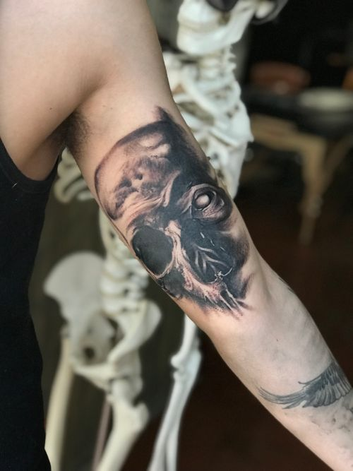 Custom skull I tattooed based of an original oil painting of mine. I'm going to want to go back into it once it's  healed and tighten up some spots.
