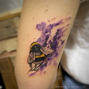 Little Fuzzybutt Bumblebee on lavender