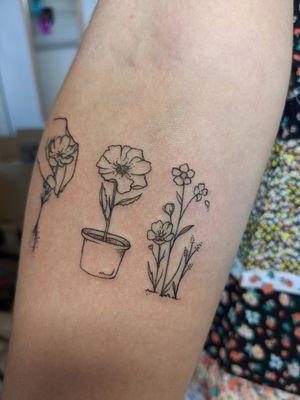 Fineline flowers by Hayley