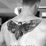 M O T H R A . . . . #healed piece by @garethdoyetattoos . . . WALK-INS WELCOME! . . . DM: @kakluckytattoos Call - 021/422/2963 Email - info@kakluckytattoos.com . . . #tattoos #art #capetown #kakluckytattoos #tattoo #tattooartist #tattoosofig #tattooedlife #kloofstreet #southafrica #420 #tattoodo #skinartmag #inkedlife #tattoosofinstagram #ink #blxckink #capetowntattoo #kaapstad #blackandgrey #realism #tattoophotography #picoftheday #healedtattoo #tattooart