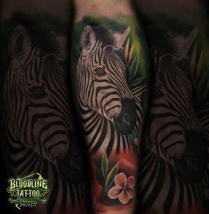 Zebra in Colour