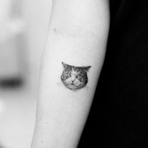 Microrealism singleneedle cat!