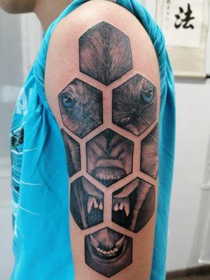 #geometric #wolf #black
