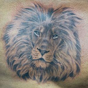 Lion chest piece
