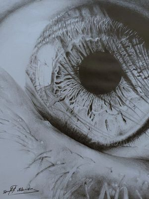 Eye done with graphite pencils